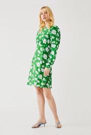 Evonna Dress